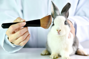 Is OGX Shampoo Cruelty-Free?